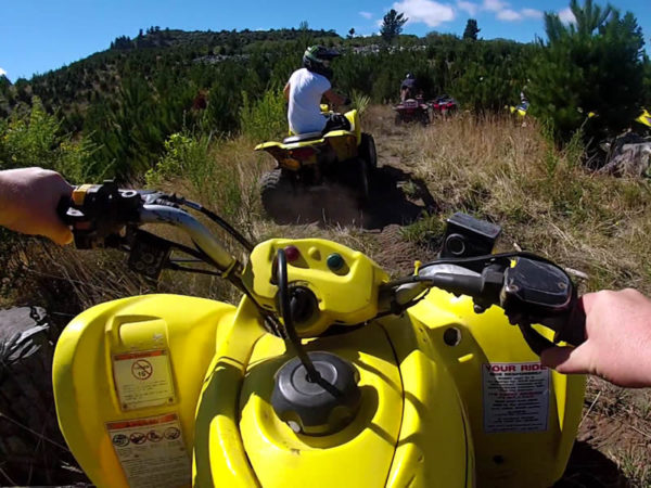 Taupo Quads